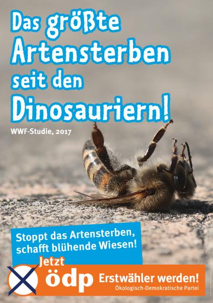Themenplakat Artenvielfalt Pappe Doppel-A1