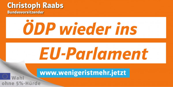 Plakatüberkleber Kandidatenplakat Bundestagswahl 2017