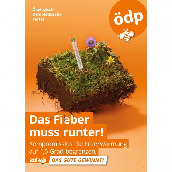 """A0 Papier-Plakat """"Das Fieber muss runter!"""""""