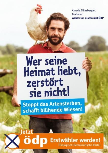 "Erstwählerplakat ""Heimat"" Pappe Doppel-A1"