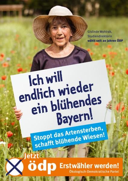 "Erstwählerplakat ""Blühendes Bayern"" Papier A0"